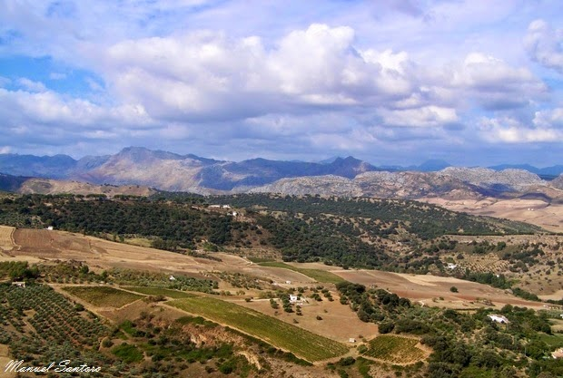 Ronda, panorama sulla campagna andalusa