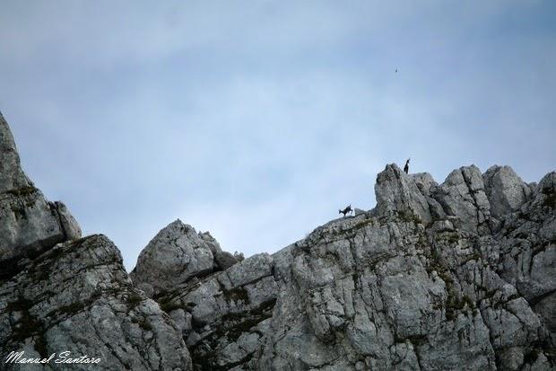 Parco Nazionale d'Abruzzo, Val di Rose