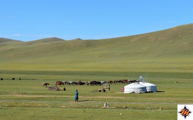 Raggiungendo il Parco Nazionale di Khorgo Terkhiin Tsagaan Nuur
