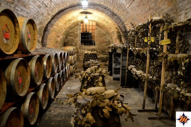 Montepulciano, Cantina città sotterranea