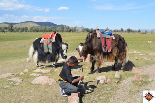 Taikhar Chuluu, ragazzini locali in attesa di turisti