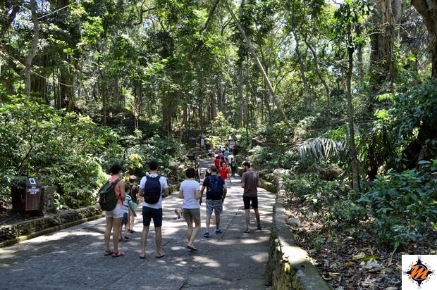 Ubud, Sacred Monkey Forest Sanctuary