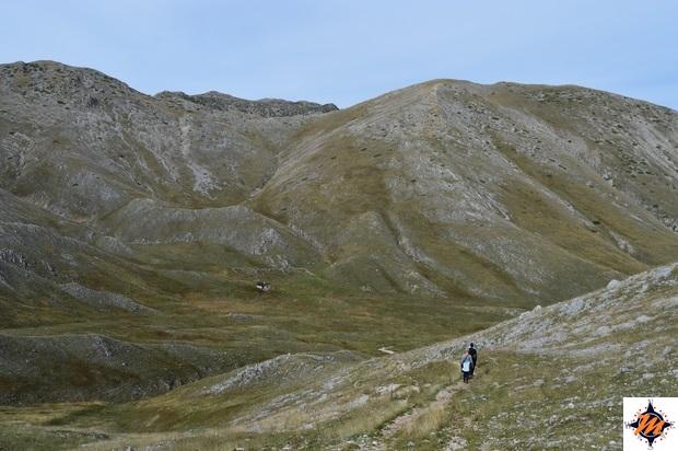 Stazzo del Campo
