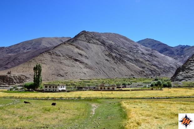 Ladakh, Miru