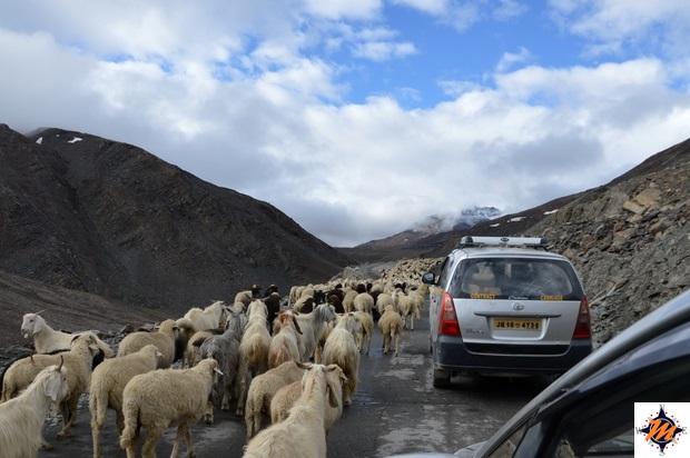 Salendo verso il Bara-lacha La Pass