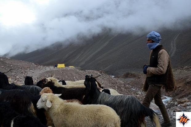 Nei pressi del Bara-lacha La Pass