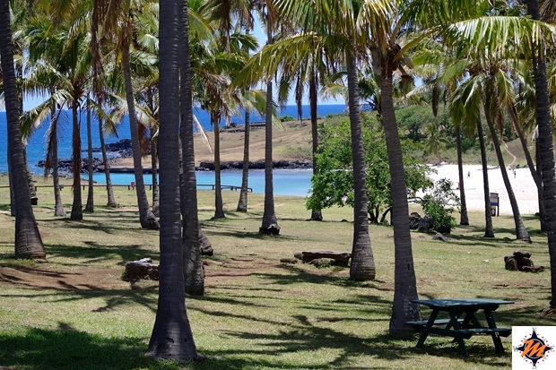 Isola di Pasqua, Anakena