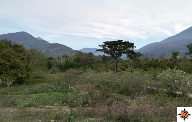 Cerro Los Aguacates