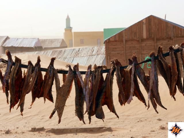 Mauritania, pesce essiccato
